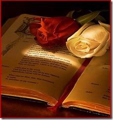 sant-jordi-rosa-i-llibre[1]